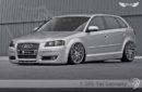 Aletas Delanteras Anchas SRS-Tec para Audi A3 & S3 (8P)